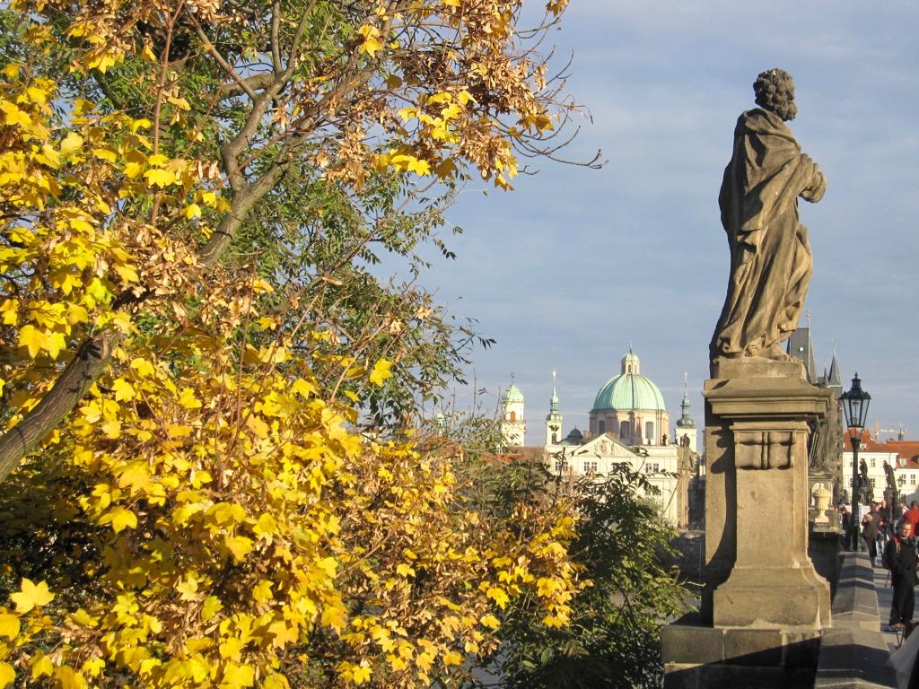 Yellow leaves next to Charles Bridge