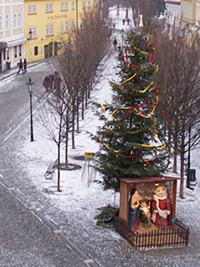 Christmas tree on Kampa Island